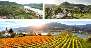 Πέμπτη  3 Δεκεμβρίου στις 9μμ: Βραδιά γευσιγνωσίας με φιάλες Αυστρίας